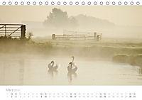Polderlandschaften in Holland (Tischkalender 2019 DIN A5 quer) - Produktdetailbild 3