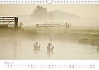 Polderlandschaften in Holland (Wandkalender 2019 DIN A4 quer) - Produktdetailbild 3
