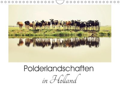 Polderlandschaften in Holland (Wandkalender 2019 DIN A4 quer), Annemieke van der Wiel