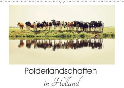 Polderlandschaften in Holland (Wandkalender 2019 DIN A3 quer), Annemieke van der Wiel