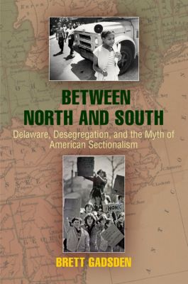 Politics and Culture in Modern America: Between North and South, Brett Gadsden