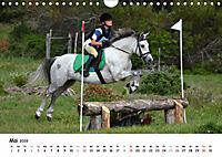Pony Springreiten (Wandkalender 2019 DIN A4 quer) - Produktdetailbild 5