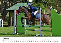 Pony Springreiten (Wandkalender 2019 DIN A4 quer) - Produktdetailbild 4