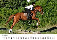 Pony Springreiten (Wandkalender 2019 DIN A4 quer) - Produktdetailbild 3