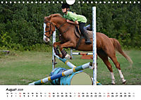 Pony Springreiten (Wandkalender 2019 DIN A4 quer) - Produktdetailbild 8