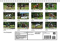 Pony Springreiten (Wandkalender 2019 DIN A4 quer) - Produktdetailbild 13