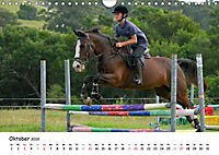 Pony Springreiten (Wandkalender 2019 DIN A4 quer) - Produktdetailbild 10