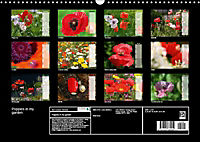 Poppies in my garden (Wall Calendar 2019 DIN A3 Landscape) - Produktdetailbild 13