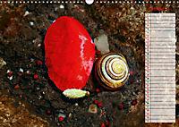 Poppies in my garden (Wall Calendar 2019 DIN A3 Landscape) - Produktdetailbild 10