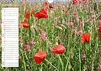 Poppy Fields of Provence (Wall Calendar 2019 DIN A4 Landscape) - Produktdetailbild 9
