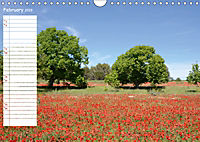 Poppy Fields of Provence (Wall Calendar 2019 DIN A4 Landscape) - Produktdetailbild 2