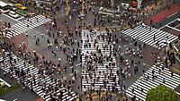 Population Boom - Produktdetailbild 7