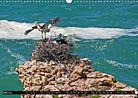 Portugal - Die Küste vom Cabo da Roca zur Ria Formosa (Wandkalender 2019 DIN A3 quer) - Produktdetailbild 5