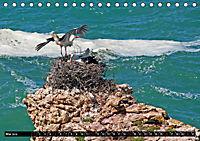 Portugal - Die Küste vom Cabo da Roca zur Ria Formosa (Tischkalender 2019 DIN A5 quer) - Produktdetailbild 5