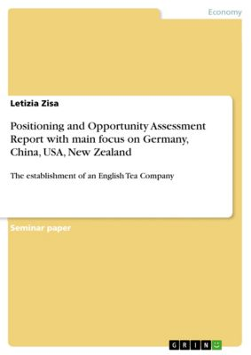 Positioning and Opportunity Assessment Report with main focus on Germany, China, USA, New Zealand, Letizia Zisa