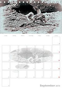Possierliche Atlashörnchen (Tischkalender 2019 DIN A5 hoch) - Produktdetailbild 9