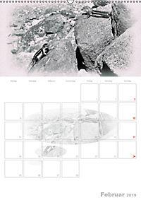 Possierliche Atlashörnchen (Wandkalender 2019 DIN A2 hoch) - Produktdetailbild 2