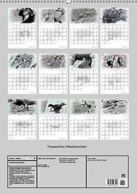 Possierliche Atlashörnchen (Wandkalender 2019 DIN A2 hoch) - Produktdetailbild 13