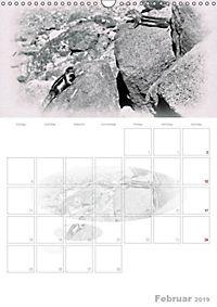 Possierliche Atlashörnchen (Wandkalender 2019 DIN A3 hoch) - Produktdetailbild 2