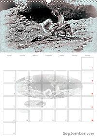 Possierliche Atlashörnchen (Wandkalender 2019 DIN A3 hoch) - Produktdetailbild 9