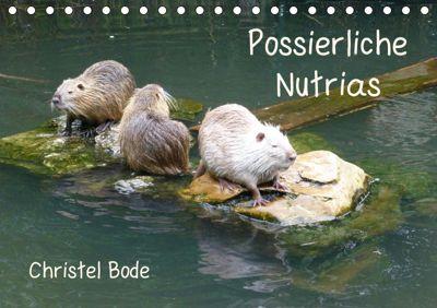 Possierliche Nutrias (Tischkalender 2019 DIN A5 quer), Christel Bode