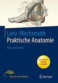 Praktische Anatomie: Bd.4 Bein und Statik