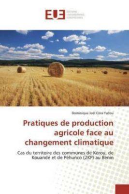 Pratiques de production agricole face au changement climatique, Dominique Joël Cora Yallou