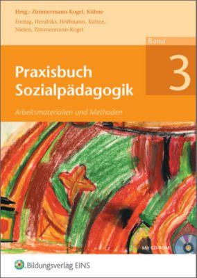 Praxisbuch Sozialpädagogik, m. CD-ROM