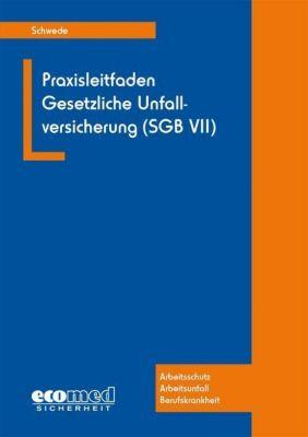Praxisleitfaden Gesetzliche Unfallversicherung (SGB VII), Joachim Schwede
