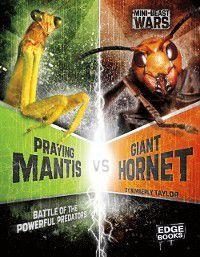 Praying Mantis vs Giant Hornet, Alicia Z. Klepeis