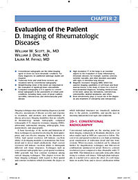 Primer on the Rheumatic Diseases - Produktdetailbild 1