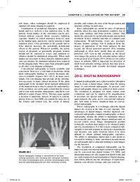 Primer on the Rheumatic Diseases - Produktdetailbild 2