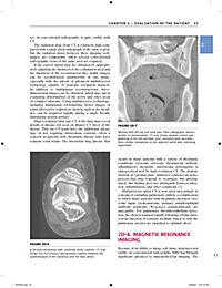 Primer on the Rheumatic Diseases - Produktdetailbild 6