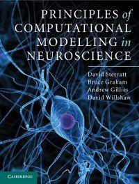Principles of Computational Modelling in Neuroscience, David Willshaw, Bruce Graham, Andrew Gillies, David Sterratt