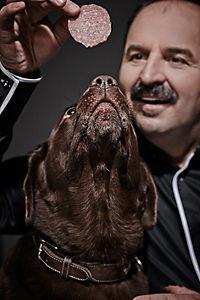 Prominent mit Hund und einer Katze - Produktdetailbild 3