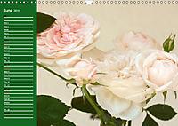 Proud Roses (Wall Calendar 2019 DIN A3 Landscape) - Produktdetailbild 6