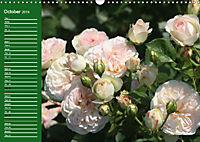 Proud Roses (Wall Calendar 2019 DIN A3 Landscape) - Produktdetailbild 10
