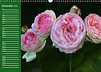 Proud Roses (Wall Calendar 2019 DIN A3 Landscape) - Produktdetailbild 11