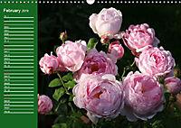 Proud Roses (Wall Calendar 2019 DIN A3 Landscape) - Produktdetailbild 2