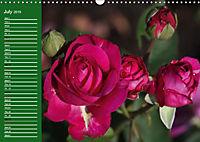 Proud Roses (Wall Calendar 2019 DIN A3 Landscape) - Produktdetailbild 7