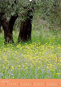 Provence Idyllen (Wandkalender 2019 DIN A2 hoch) - Produktdetailbild 3