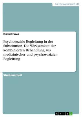 Psychosoziale Begleitung in der Substitution. Die Wirksamkeit der kombinierten Behandlung aus medizinischer und psychosozialer Begleitung, David Fries