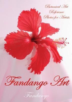 Publicious Book Publishing: Fandango Art, Fandango Fandango