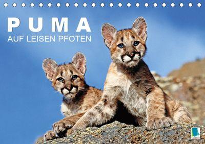 Puma: Auf leisen Pfoten (Tischkalender 2019 DIN A5 quer), k.A. CALVENDO