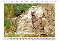 Puma: Auf leisen Pfoten (Tischkalender 2019 DIN A5 quer) - Produktdetailbild 9
