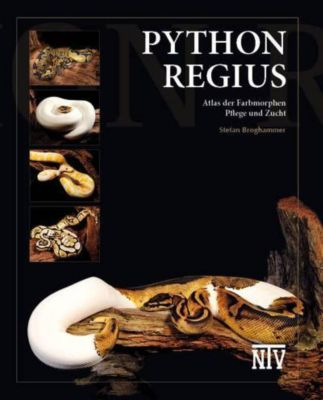 Python regius, Stefan Broghammer
