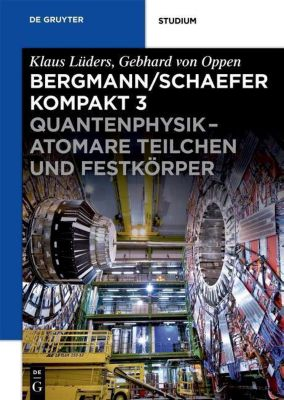 Quantenphysik - Atomare Teilchen und Festkörper, Gebhard Oppen, Marco Busch