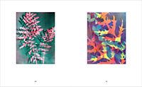 QUELL - Eine Retrospektive - Produktdetailbild 4