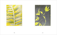 QUELL - Eine Retrospektive - Produktdetailbild 5