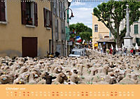 Quer durch Südfrankreich (Wandkalender 2019 DIN A2 quer) - Produktdetailbild 10
